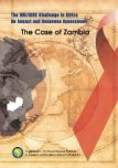 The HIV and AIDS Challenge in Africa : An Impact and Response Assessment : The Case of Zambia